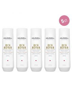 5X Goldwell Dualsenses Rich Repair Restoring Shampoo 250ml