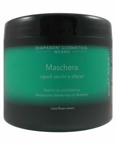 DCM Mask Dry Hair 500ml