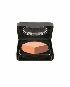 Make-up Studio Eyeshadow Wet & Dry Trio Praise of Shadows